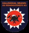 Hallingdal brann- og redningstjeneste